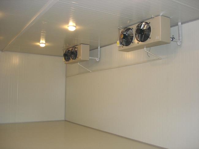 茶叶保鲜库