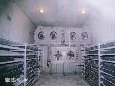 速冻冷库设计与